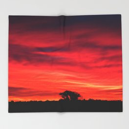 Tree Silhouette at Predawn Throw Blanket