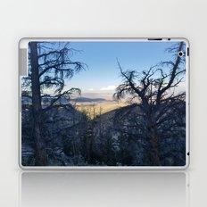 Ancient Bristlecone Pine Forest #1 Laptop & iPad Skin