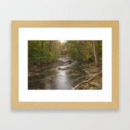 DuPage River - Waterfall Glen Framed Art Print