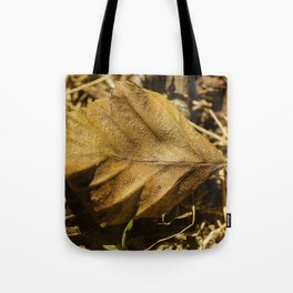 In the forest #10 Tote Bag