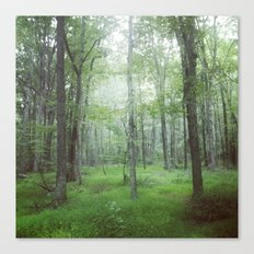 Foggy Forest Landscape Photo Canvas Print