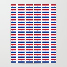 flag of paraguay 2 -paraguyan,asuncion,spanish, south america, latin america,pan flute,coffee,forest Poster