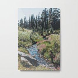 Garibaldi Provincial Park Metal Print