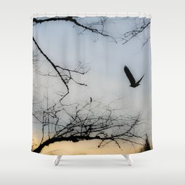 My Friend, The Eagle Shower Curtain
