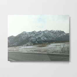 Nature with snow Metal Print