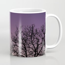 A bare tree in the sunset. Coffee Mug