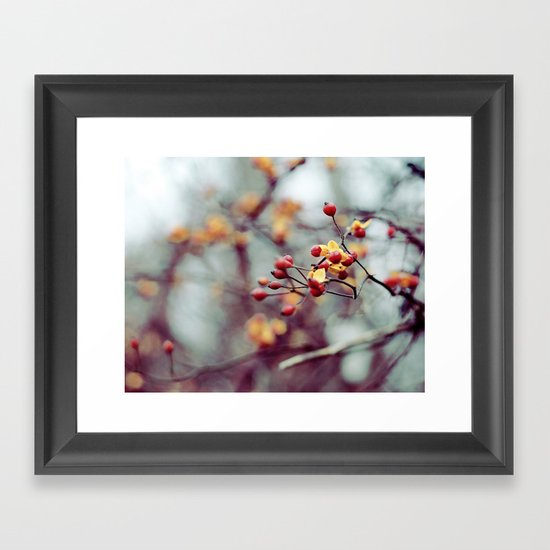 Frozen Fruit Framed Art Print