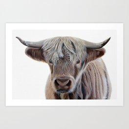 Highland Cow Acrylic Painting Art Print