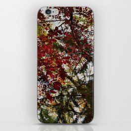 Autumn Leaves Abstract iPhone Skin