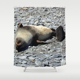Mother Fur Seal and Pup Shower Curtain