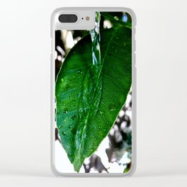 Bright Green Leaf Clear iPhone Case
