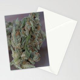 Close up macro of Dr. Who Medicinal Medical Marijuana Stationery Cards
