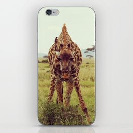 Giraffe Wants to Know iPhone Skin