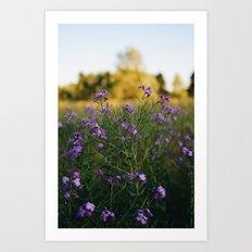 Pretty n Purple Art Print