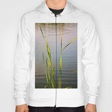 Evening Reeds Hoody