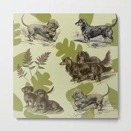 Dachshunds pattern Metal Print