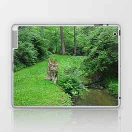 Conscious Calm Laptop & iPad Skin