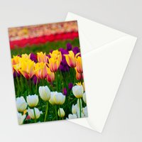 Fields of Color III, Woodburn Tulip Festival Stationery Cards
