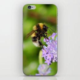 Busy bee iPhone Skin