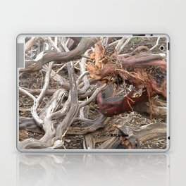 TEXTURES - Manzanita Drought Conditions #4 Laptop & iPad Skin