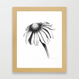 Double Cone Flower Framed Art Print