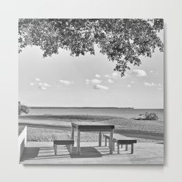 Anyone for a peaceful picnic Metal Print