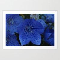 Blue Symphony Art Print