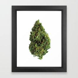 Sour Apple Framed Art Print