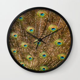 Peacock Feathers in Full Display Wall Clock