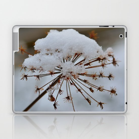 Cow Parsley Laptop & iPad Skin