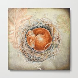 Mouse in the nest Metal Print