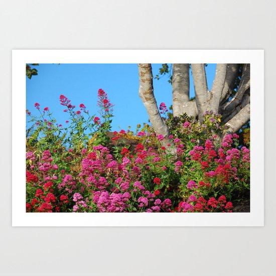 Flowers Around a Tree, Yachats, Oregon Art Print