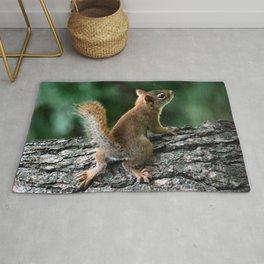 Young Red: Juvenile Red Squirrel Rug
