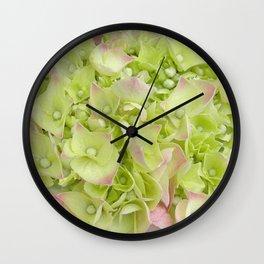 Hydrangea Profusion Wall Clock