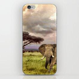 Elephant Landscape Collage iPhone Skin