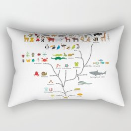 Evolution scale from unicellular organism to mammals. Evolution in biology, scheme evolution Rectangular Pillow