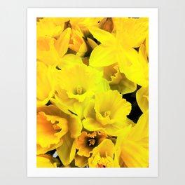 Smiley Daffodils Art Print