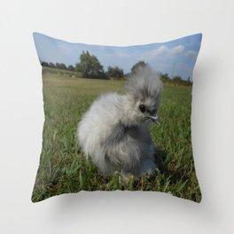Splash Silkie Chick Throw Pillow