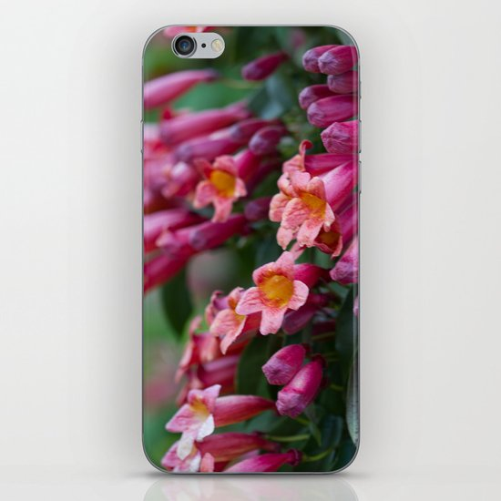 We Were Made For This iPhone & iPod Skin