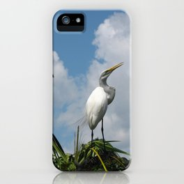 Dino Bird iPhone Case