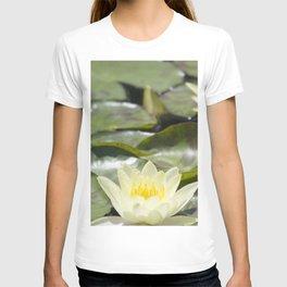 Longwood Gardens - Spring Series 303 T-shirt
