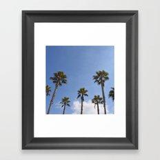 Sky Palms Framed Art Print