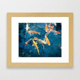 Koi Pond in Japan Framed Art Print