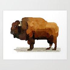 American Buffalo (Bison) Watercolor Painting Art Print
