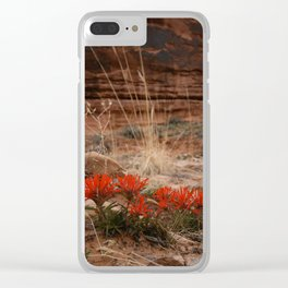 Indian Paintbrush Clear iPhone Case