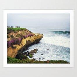 La Jolla Cliffs and Flowers Art Print