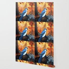 Blue Jay Life Wallpaper