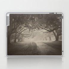 Avenue of Oaks Laptop & iPad Skin