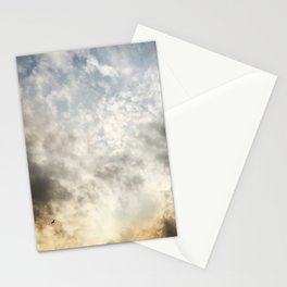 Flying Solo Stationery Cards