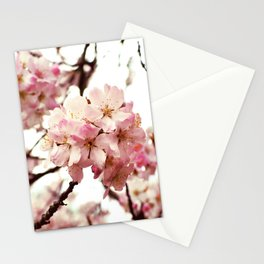 Front and Centre Stationery Cards